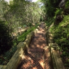 The more than 300 steps through the lush rainforest up to That Chomsi