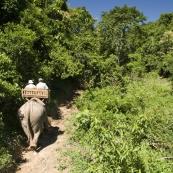 Riding through the Laos jungle
