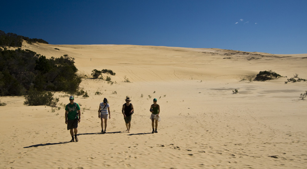 Lisa, Chris, Sarah and James on the vast expanse of the Wungul Sandblow