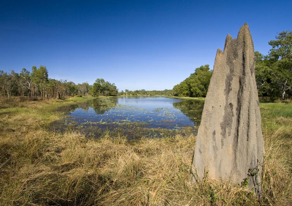 Picturesque Breeza Kennedy Waterhole