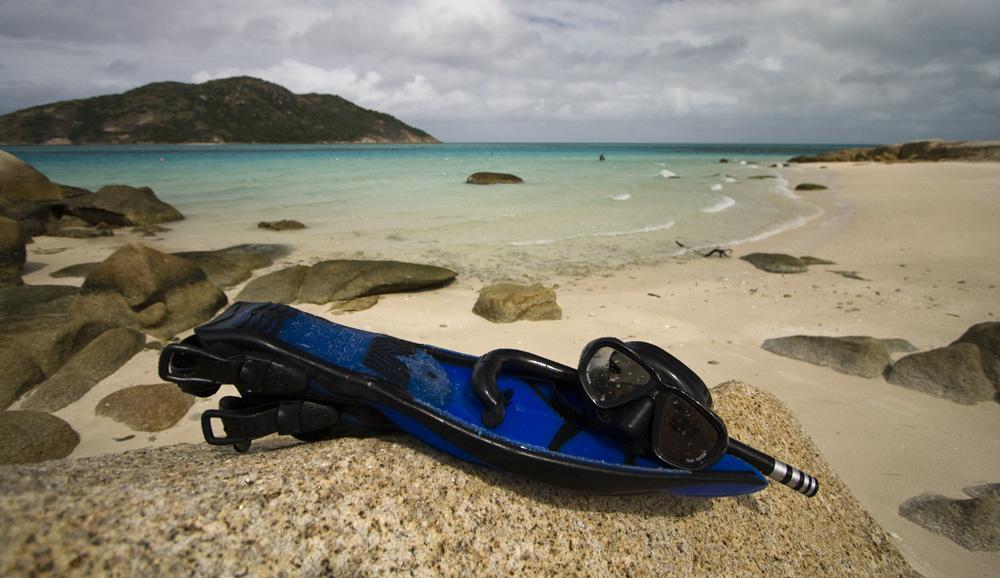 Snorkeling at Loomis Reef