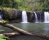 Majestic Nandroya Falls
