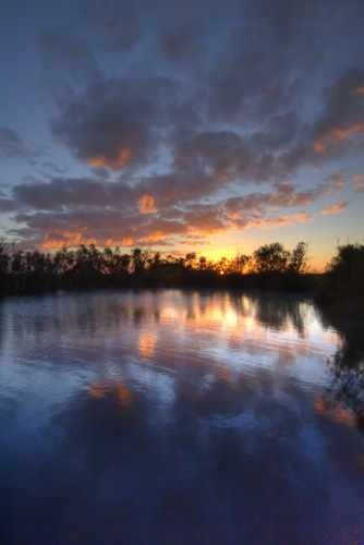 Sunrise at Dalhousie Springs