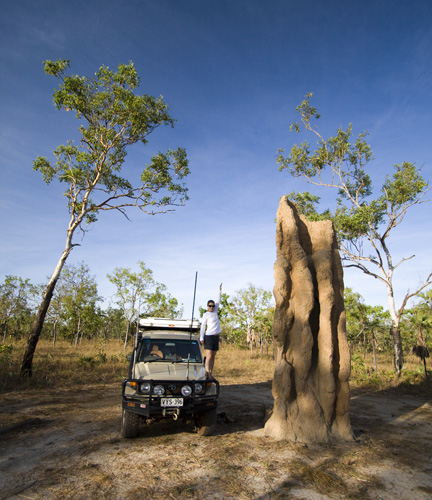 The biggest termite mound we saw in Litchfield National Park