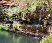 The ferns and waterfall surrounding Circular Pool in Dales Gorge