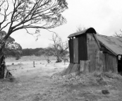 Howitt Plains Hut