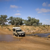 One of the few creeks containing water between William Creek and Oodnadatta