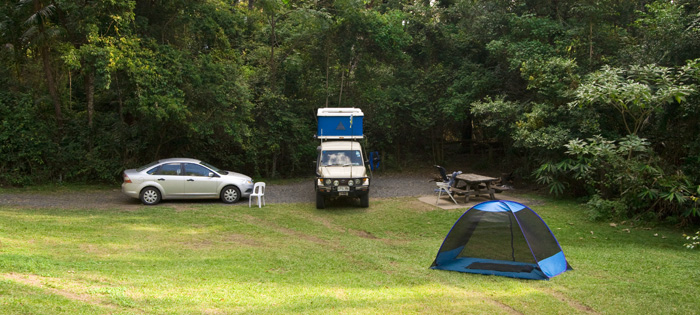 Our campground in Border Ranges National Park