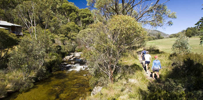 Hiking along the Thredbo River to Dead Horse Gap
