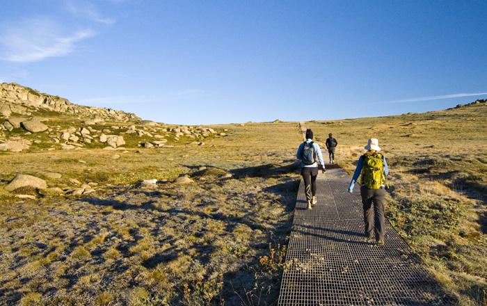 The trail through the high mountain plains
