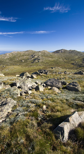 Looking north from Mount Kosciuszko