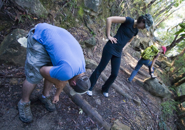 Checking for leeches in Leura Forest