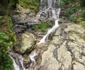 Tristania Falls in Dorrigo National Park