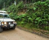The Tank cruising through the rainforest in Nymboi Binderay National Park