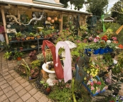 One of the eclectic shops in Maclean