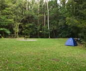 The picturesque rainforest campground at Rummery Park next to Nightcap National Park