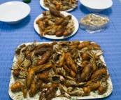 Yabby feast in Broken Hill