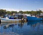 Moored fishing boats at the Sydney Fish Market