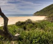 Seven Mile Beach from The Ruins campground in Booti Booti National Park