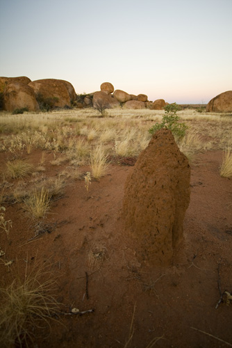 A termite mound at the Devil\'s Marbles before sunrise