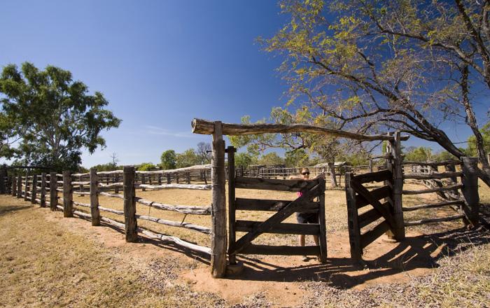 Lisa in the Bullita Homestead cattle yards