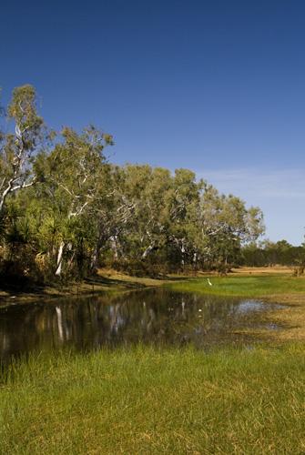Cockatoo Lagoon