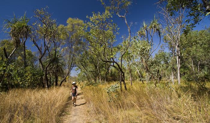 The Jarnem loop walk in Keep River National Park