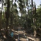 The walkway to Mataranka Springs