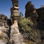 A sandstone tower along the Bardedjilidji Walk