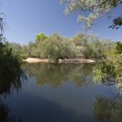 Fishing at Djarradjin Billabong next to Muirella Park campsite
