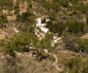 The calcite cascades in Limestone Gorge