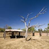 The Bullita Homestead cattle yards