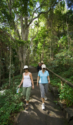 Lisa and Jenni hiking to Kondalilla Falls