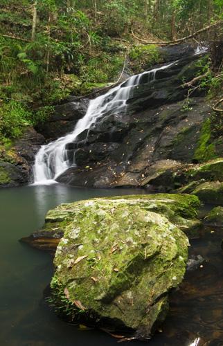 Picnic Creek Falls