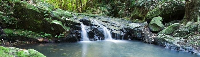 Picnic Creek