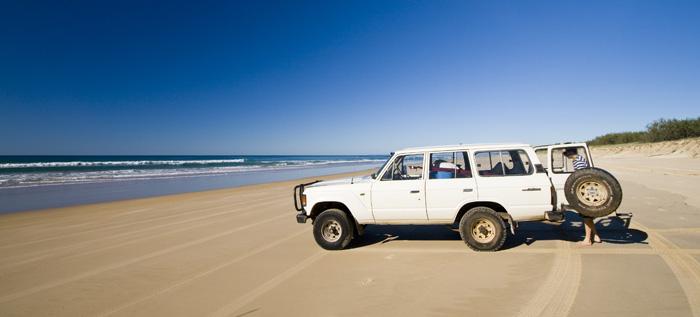 Bessie on Fraser Island's eastern beach