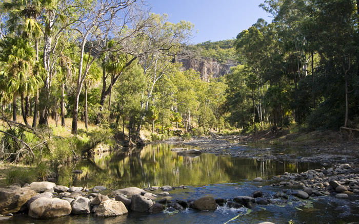 Carnarvon Creek at the mouth of Carnarvon Gorge