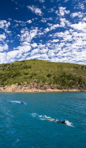 Snorkeling at Border Island