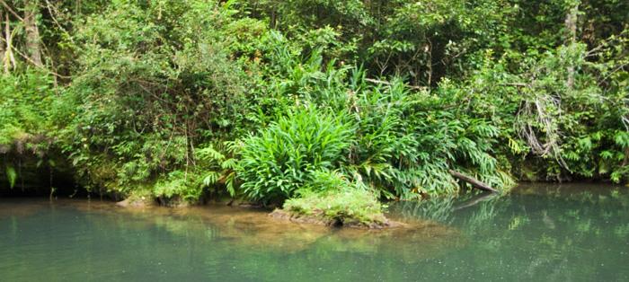 Bush Pool swimming hole near our Henrietta Creek campsite