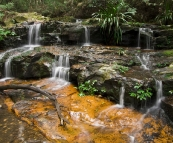 Lamington National Park: cascades along the track to Ballanjui Falls