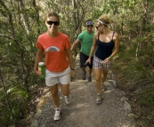 Hiking up Mount Coolum
