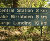 The track to Lake Birrabeen