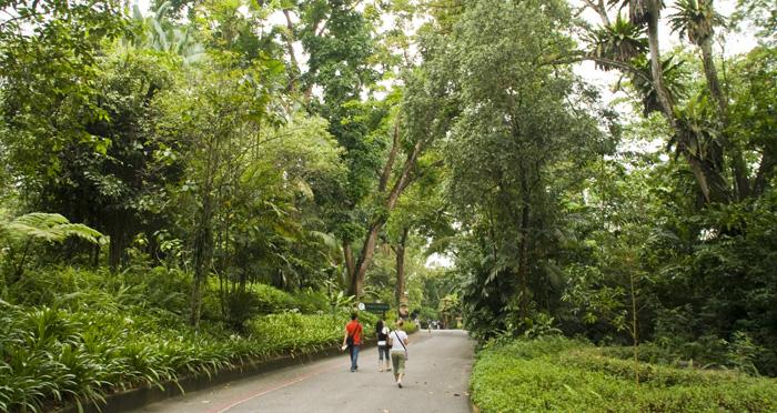 The Singapore Zoo: Lisa walking between exhibits