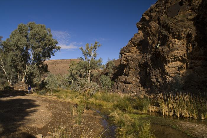 Blinman Creek