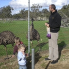 Sam, Max and Eleanor feeding the emus in Minlaton