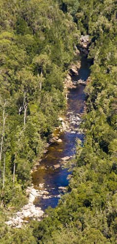 The Franklin River in Franklin-Gordon Wild Rivers National Park