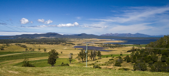 View of the vineyards and Freycinet Peninsula