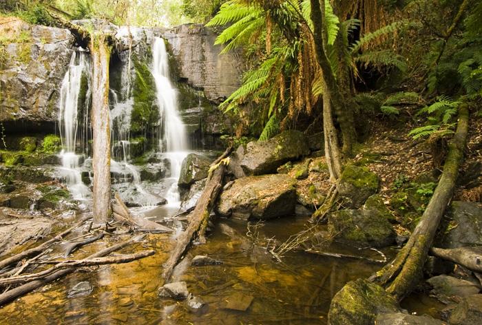 Lilydale Falls