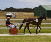 The King Island Races