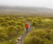 Lisa walking through the plains near Crater Creek